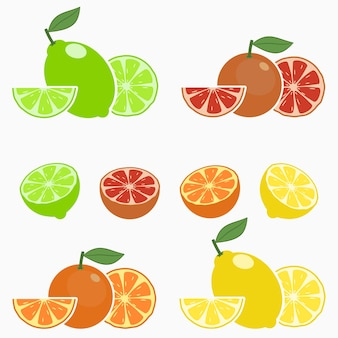 Citrus orange lime lemon grapefruit set of whole fruit with slice half and leaf vector