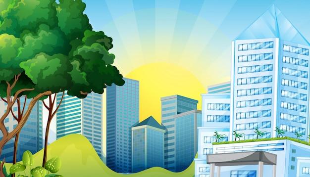 Городская сцена с высокими зданиями