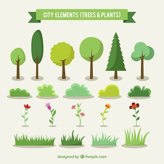 City trees and plants