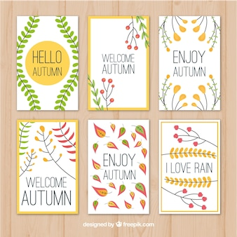 平らな秋のカードのclasicalパック