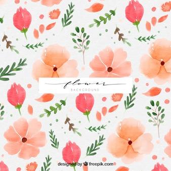 水彩画の花のある古典的な背景