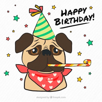 Classic pug with birthday accesories