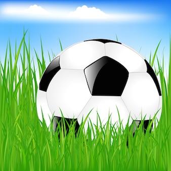 Classic soccer ball in green grass