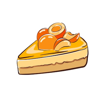Classic sponge cake garnished with apricot pieces and drenched in apricot jelly vector i