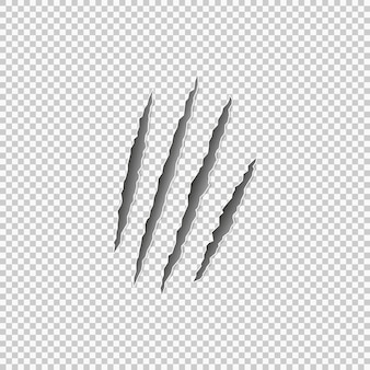 Claw marks of a beast on a transparent background. vector eps 10