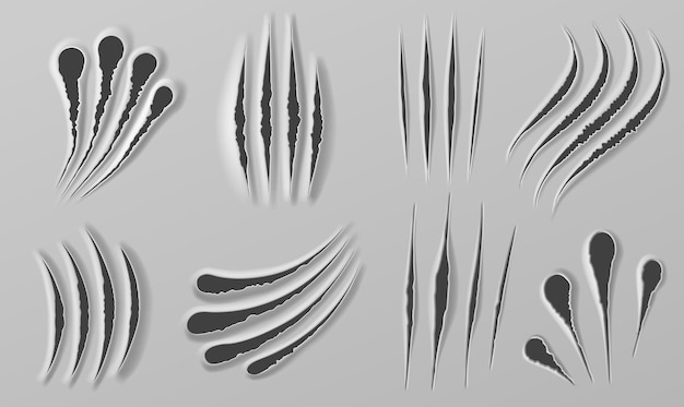 Claw rips. marks of beast paws. realistic bear, tiger or lion torn scratch. horror halloween monster or animal slash mark texture vector set. illustration tiger torn, beast attack slash