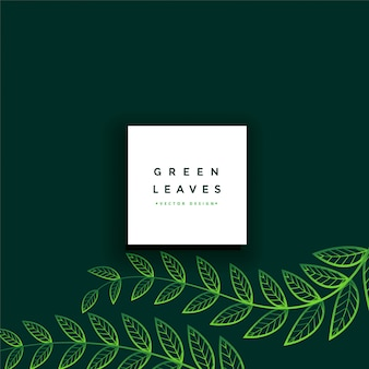 Clean minimal green leaves background