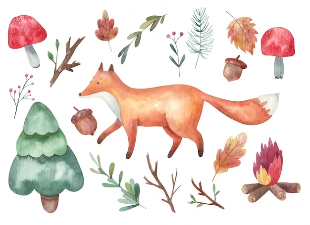 Клипарт, лиса и лес, мухоморы, ветки, ель, костер акварель иллюстрации на белом фоне