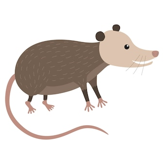 귀여운 만화 주머니쥐의 클립 아트 그림