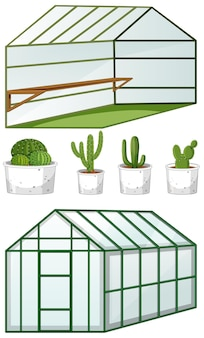 Close and open view of empty greenhouse with many plants in pots