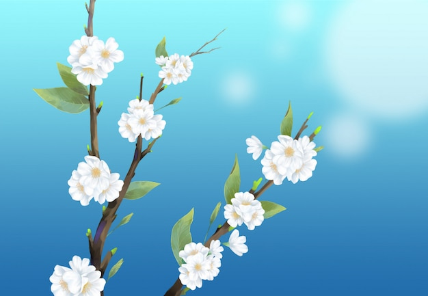 Close-up cherry blossom illustration on blue background.
