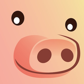 Close up face of pig.