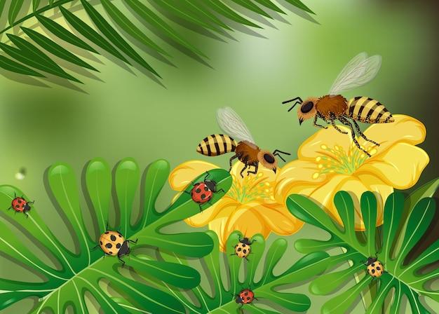 Chiudere la scena di fiori e foglie con molte api e coccinelle