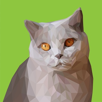 Close up gray cat low poly vector