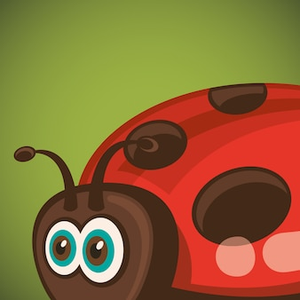 Close up of ladybug