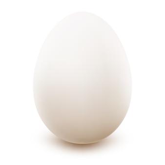 계란 흰가 까이 서.