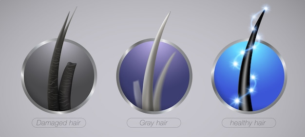 Close up of strong hair condition damaged and gray hair realistic icon style.