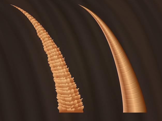 Closeup anatomy of damaged ragged hair and normal smooth hairs