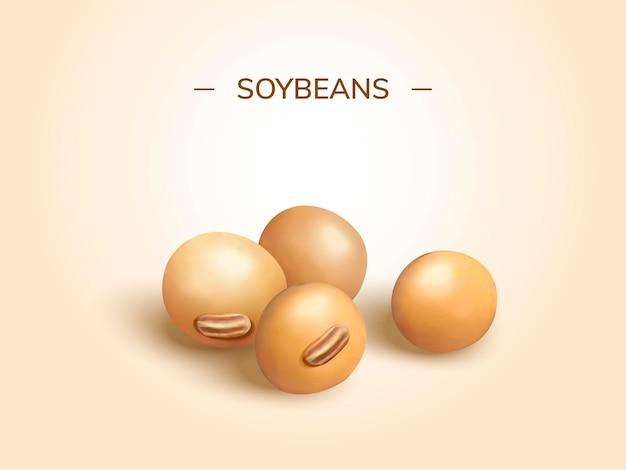 3dスタイルで大豆のデザイン要素をクローズアップ