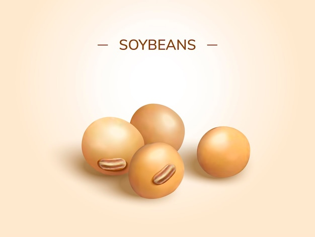 Closeup look at soybeans design element in 3d style