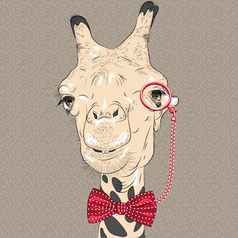 Closeup portrait of funny giraffe hipster
