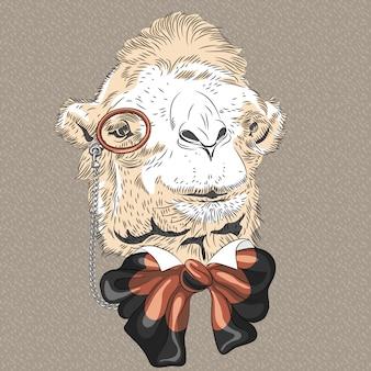 Крупным планом портрет смешной верблюд битник