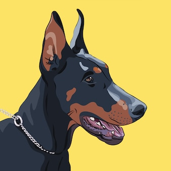 Крупный план серьезная собака породы доберман пинчер