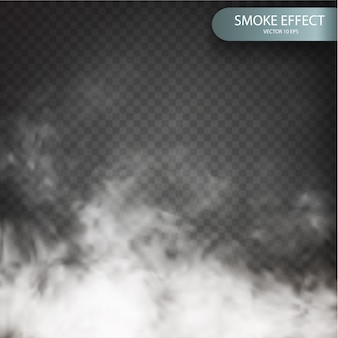 Cloud effect on a transparent background realistic.