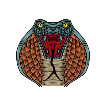 Cobra snake illustration in old school tattoo style.  element for logo, label, sign, poster, t shirt.  illustration