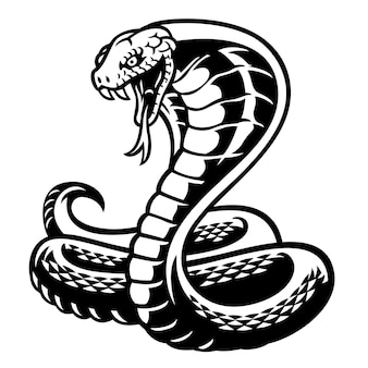 Cobra snake tattoo style in black and white