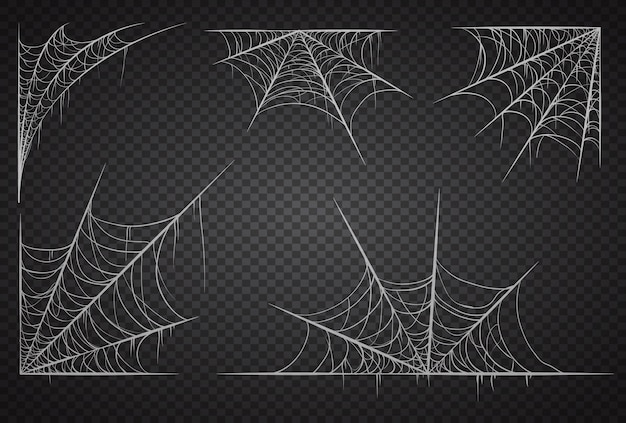 Cobweb set isolated on black transparent background