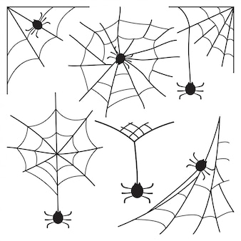 Cobweb with spider set icon for halloween isolated on white.