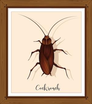 木製フレームのゴキブリ