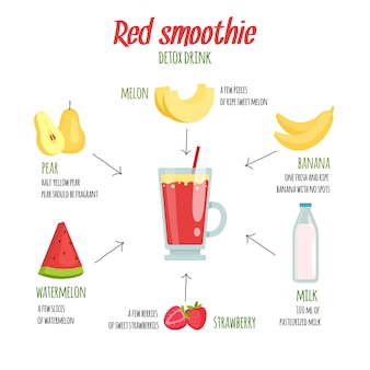 Cocktail infographics. various fresh fruits smoothie ingredients