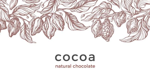 Урожай какао. искусство рисованной ботаническое дерево, фасоль, тропические фрукты, лист.