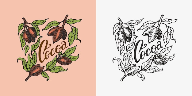 Cocoa leaves vintage badge or logo for tshirts typography shop or signboards hand drawn engraved