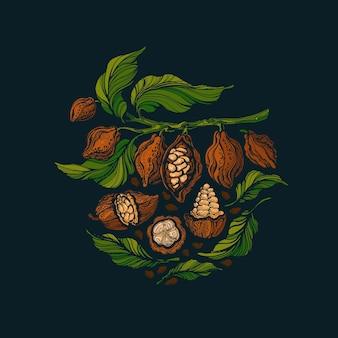 코코아 그린 나무 열매 콩. 예술 새겨진 빈티지 일러스트