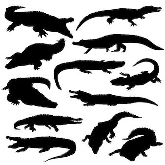 Cocodrile animal river silhouette clip art
