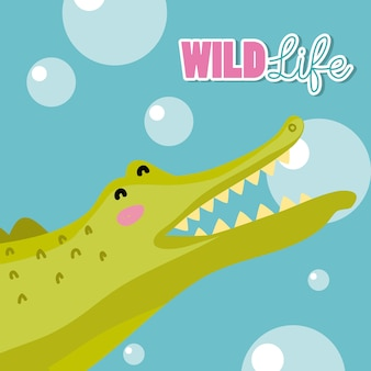 Cocodrile wildlife animal cute cartoon