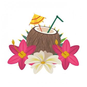 Coconut cocktail with umbrella icon