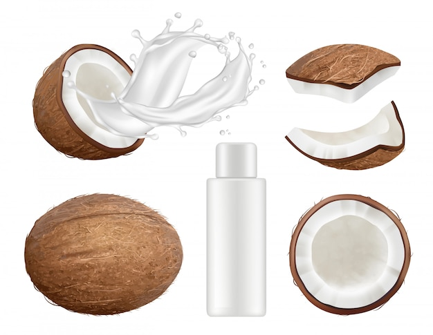 Coconut collection. fresh tropical coco fruit with milk vector nature coconuts realistic illustrations