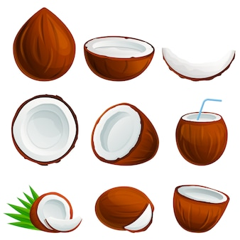 Coconut icon set, cartoon style
