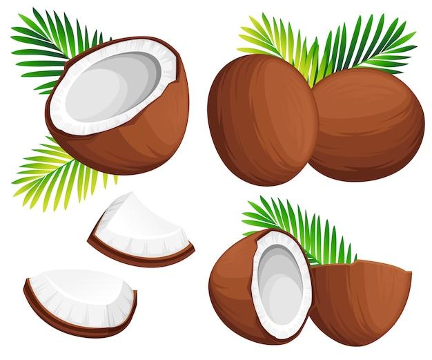 Кокосовая иллюстрация. кокосы целиком и по частям с зелеными пальмовыми листьями. органический пищевой ингредиент, натуральный тропический продукт. иллюстрация на белом фоне