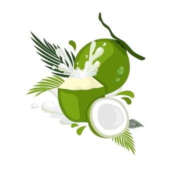 ココナッツのイラスト