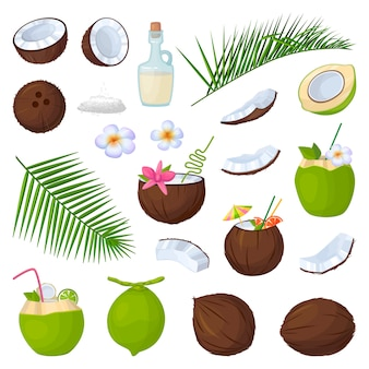 Coconut isolated cartoon set icon.