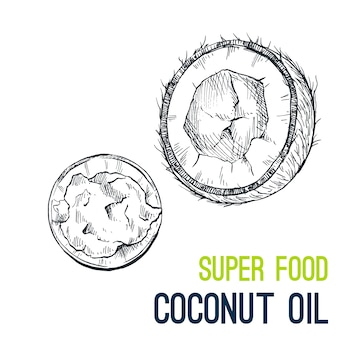 Coconut oil. super food hand drawn