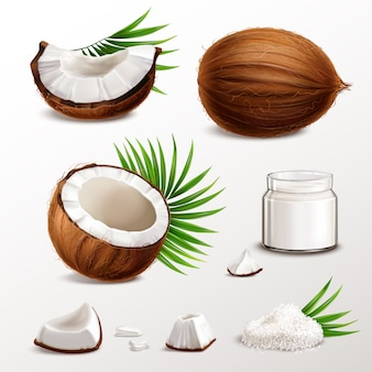 Coconut realistic set with nut segments  flesh pieces jar milk powder dry flakes palm leaves  illustration