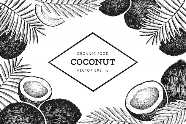 Coconut with palm leaves design template