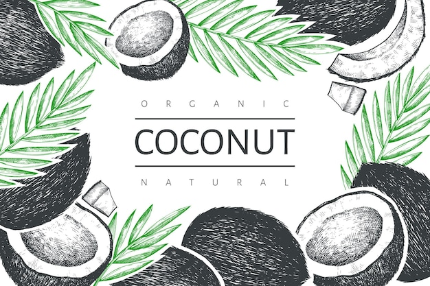 Coconut with palm leaves label template.