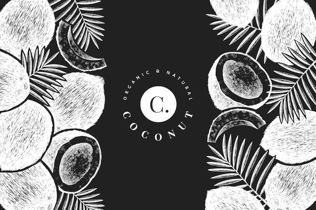 Coconut with palm leaves  template. hand drawn  food illustration on chalk board. engraved style exotic plant.  botanical tropical background.